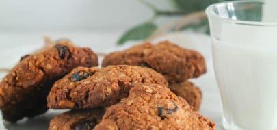 Cranberry noten koeken