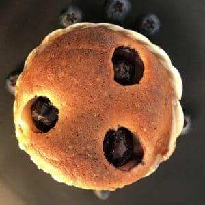 Live Puri blauwe bessen muffin